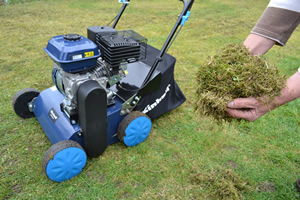 Scarifying will tease out huge amounts of moss and dead grass