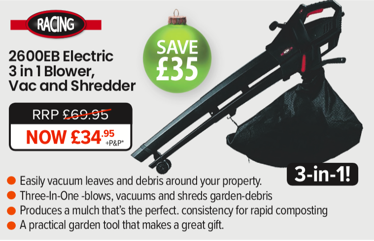 Racing 2600EB Electric Leaf Blower Vac - Christmas Gifts Ideas for Gardeners